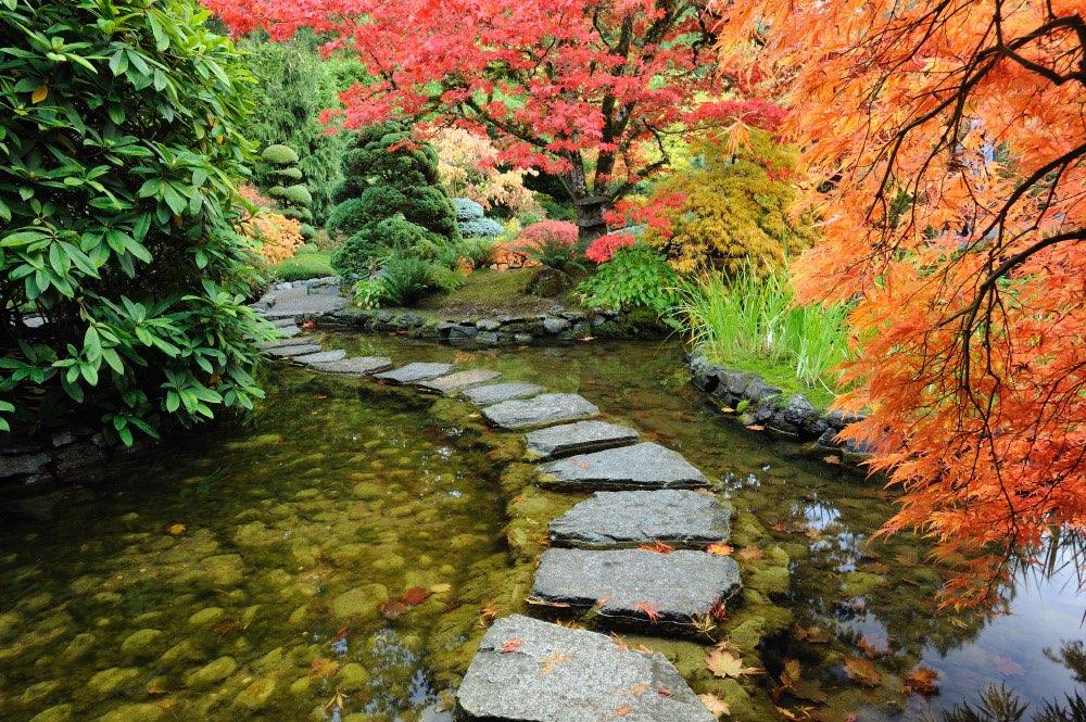 japanische gärten, Gartenarbeit ideen