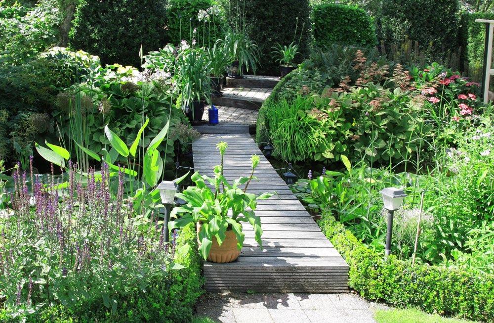 steg ber dem teich in einem botanischen garten. Black Bedroom Furniture Sets. Home Design Ideas